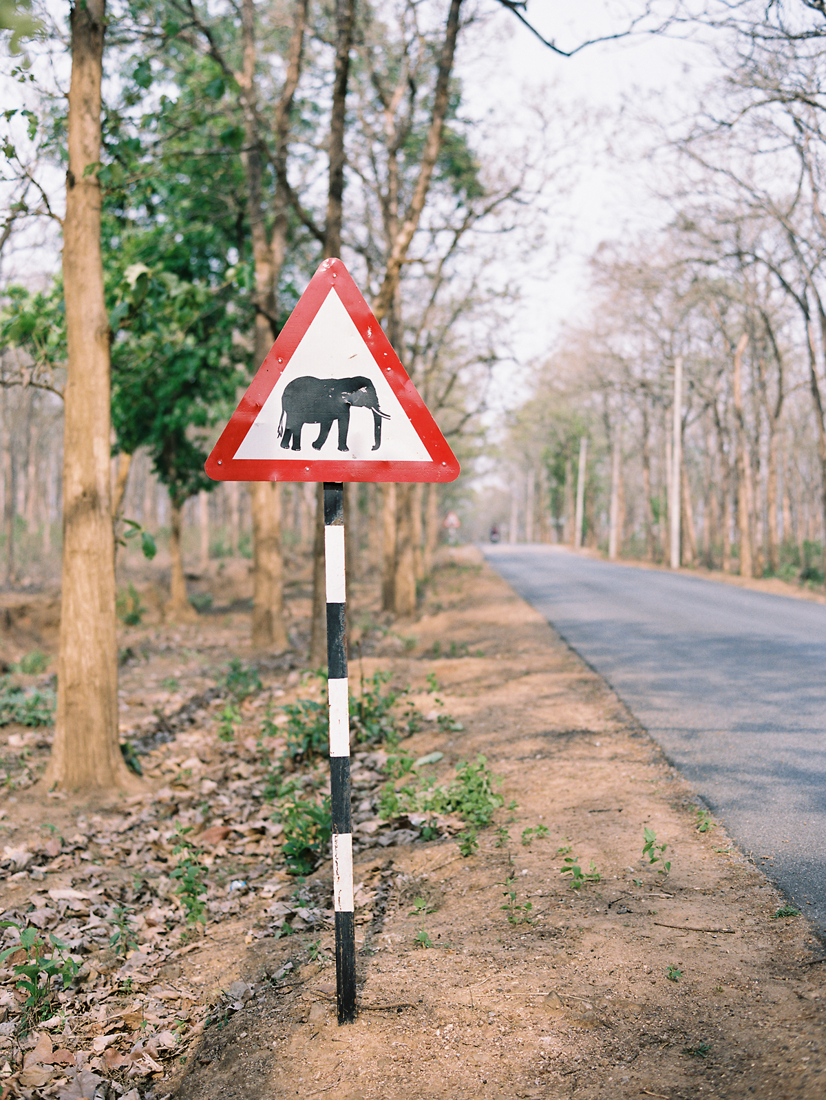 birgithart-travel-india_050.jpg