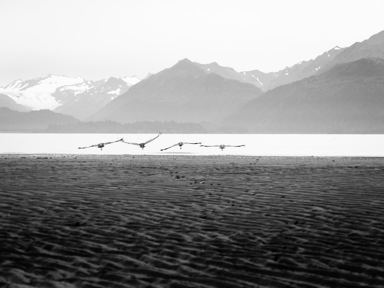 Alaska-35.jpg