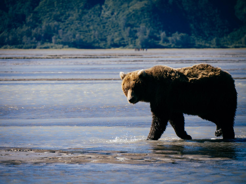 Alaska-47.jpg