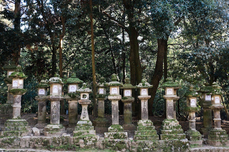 Nara Japan 10.jpg