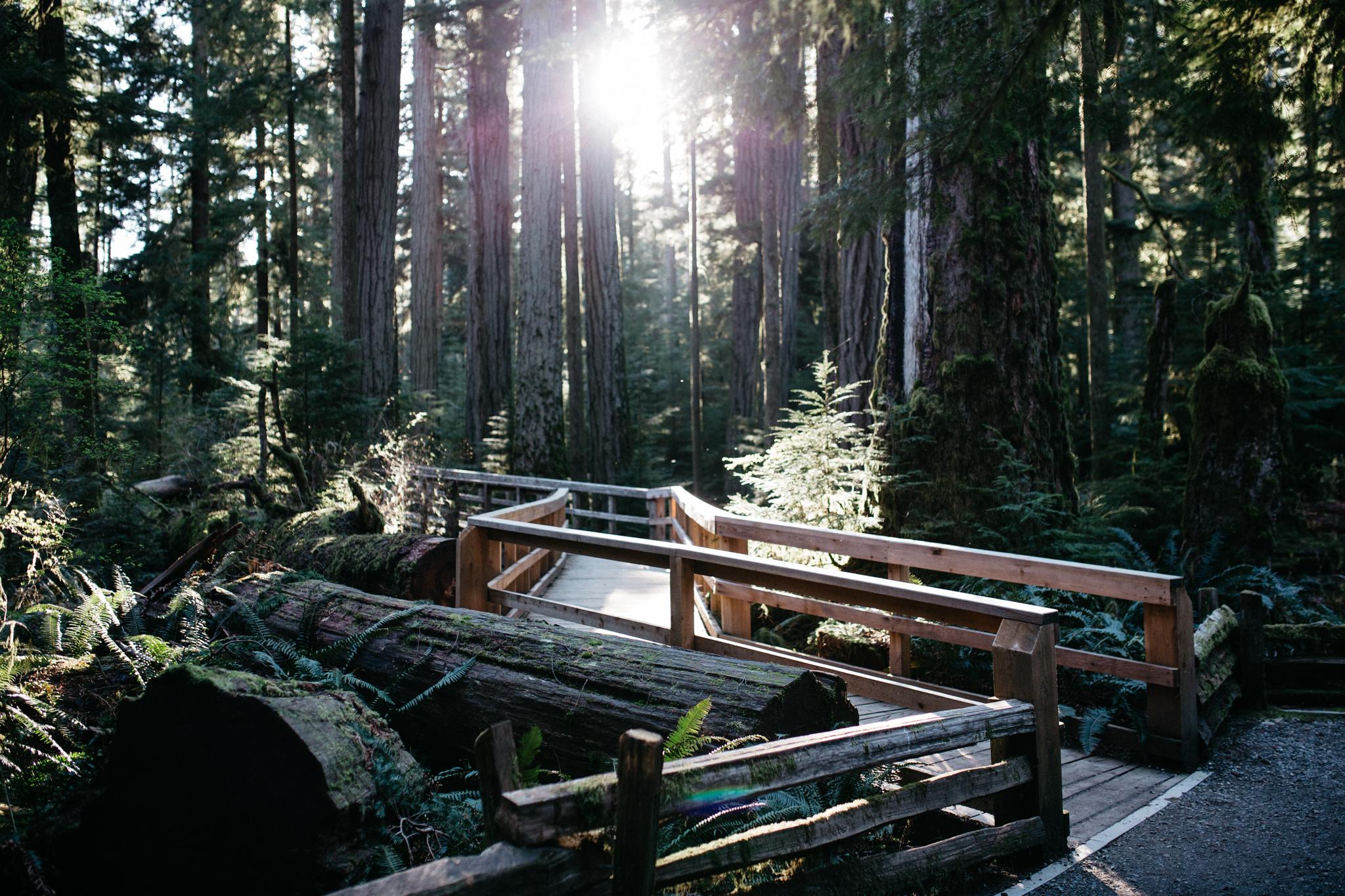 Vancouver Island (c)Kerstin Weidinger-40.jpg