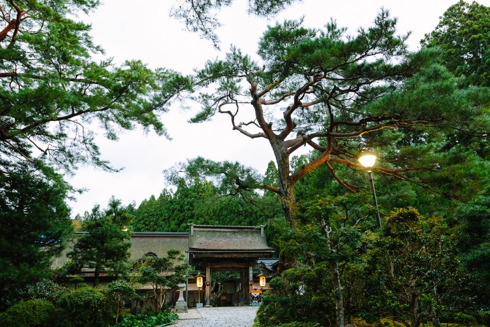 Japan_Aline_0257.jpg