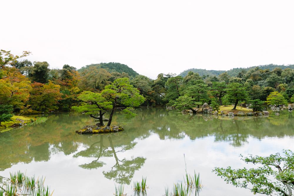 Japan_Aline_0326.jpg