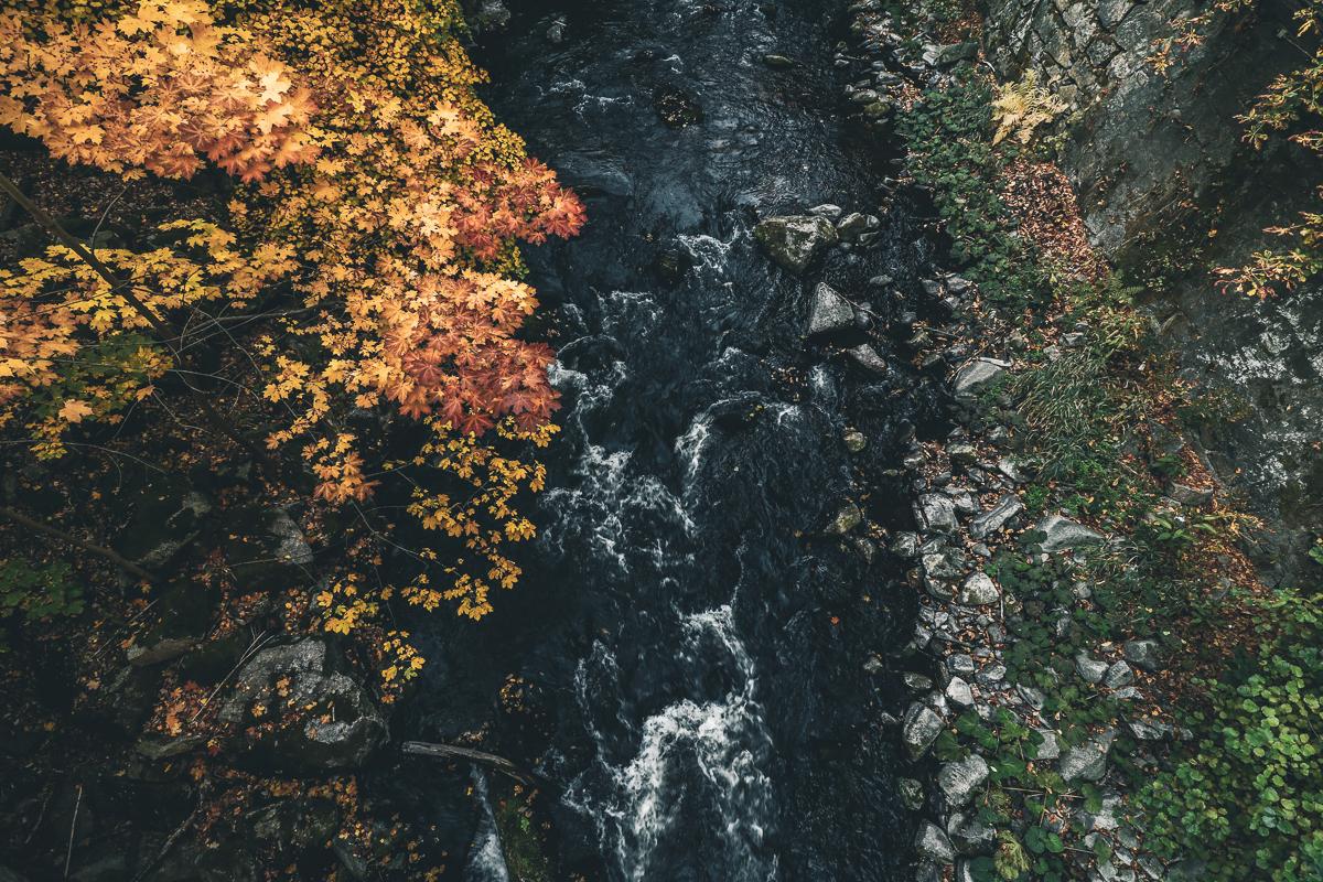 Herbst Bodetal_2.jpg