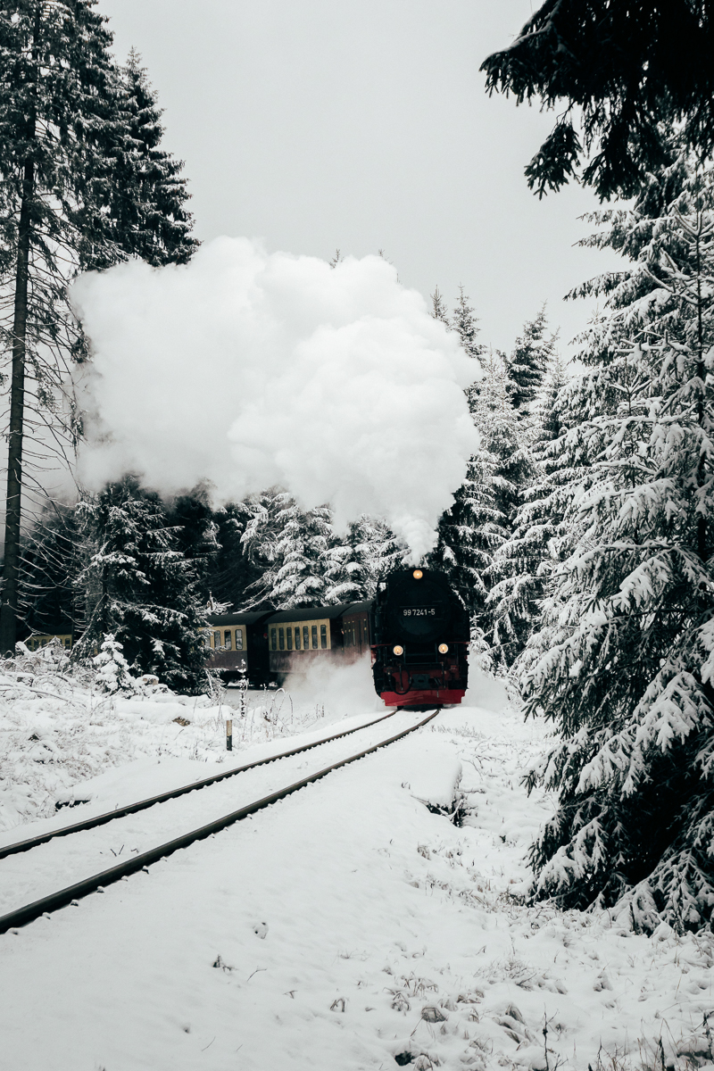 Winter Harz_11.jpg