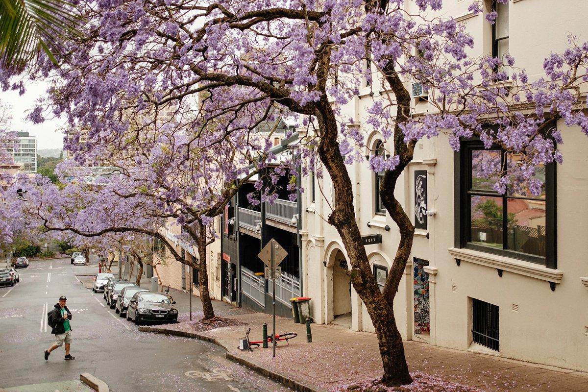 01 Australien-Sydney 1.jpg