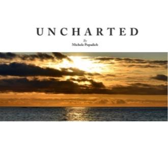 Unchartedcover.jpg