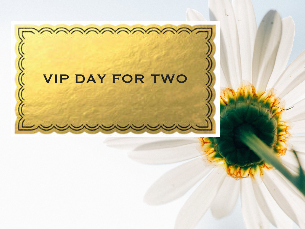 VIP Day for Two with daisy.jpg