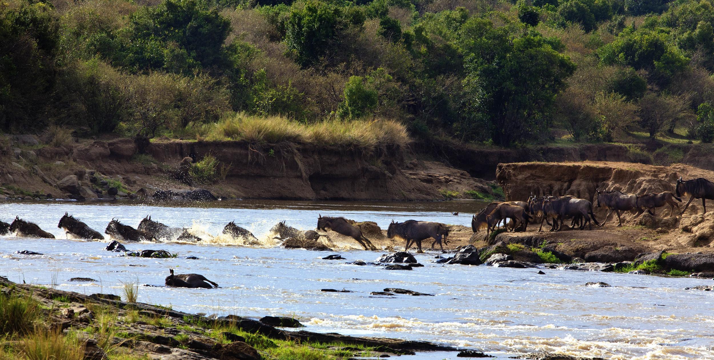 Mara River Kenya