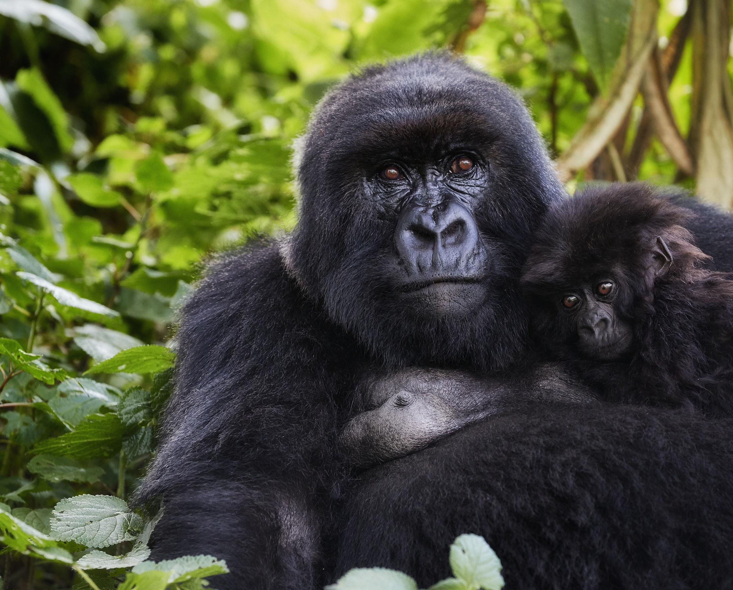 Mother and Child Rwanda