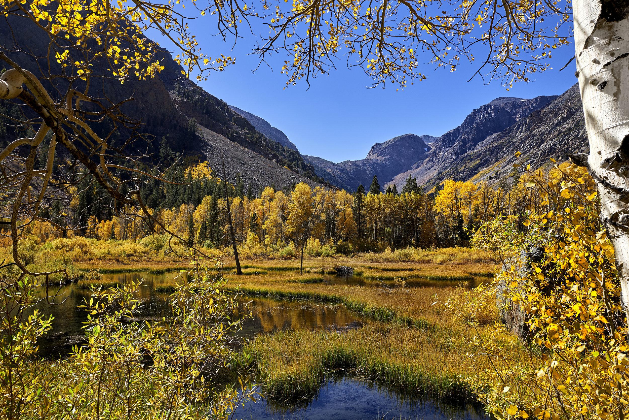 Fall Afternoon - Sierra Nevada Mountains, California