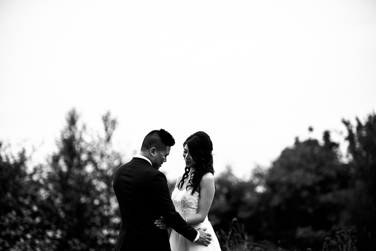 vancouver wedding photographer (7 of 966).jpg