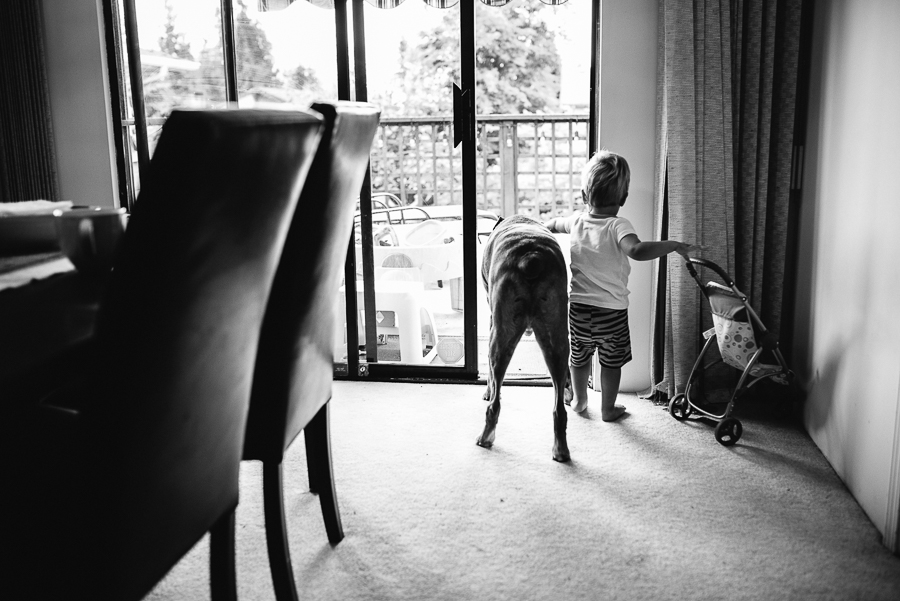 vancouver family photographer (20).jpg