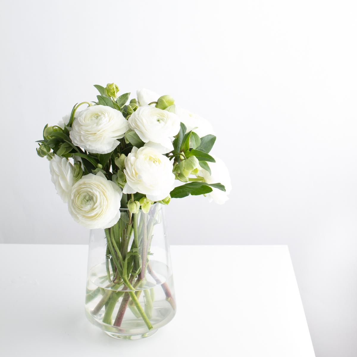 White Ranunculus.JPG