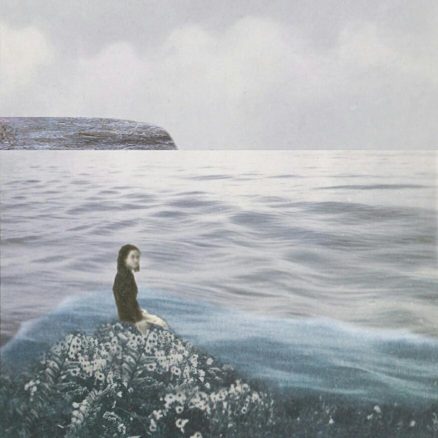 Oceanarium ~ Limited Edition Giclee Print