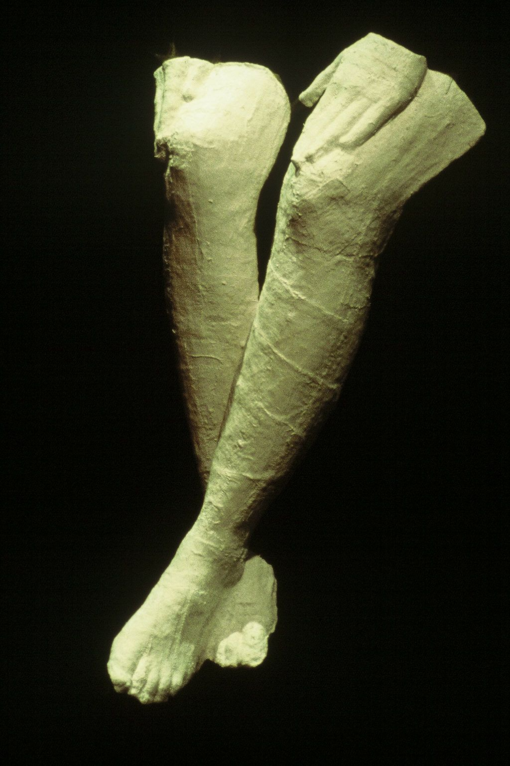 Vagina Monologues legs.jpg