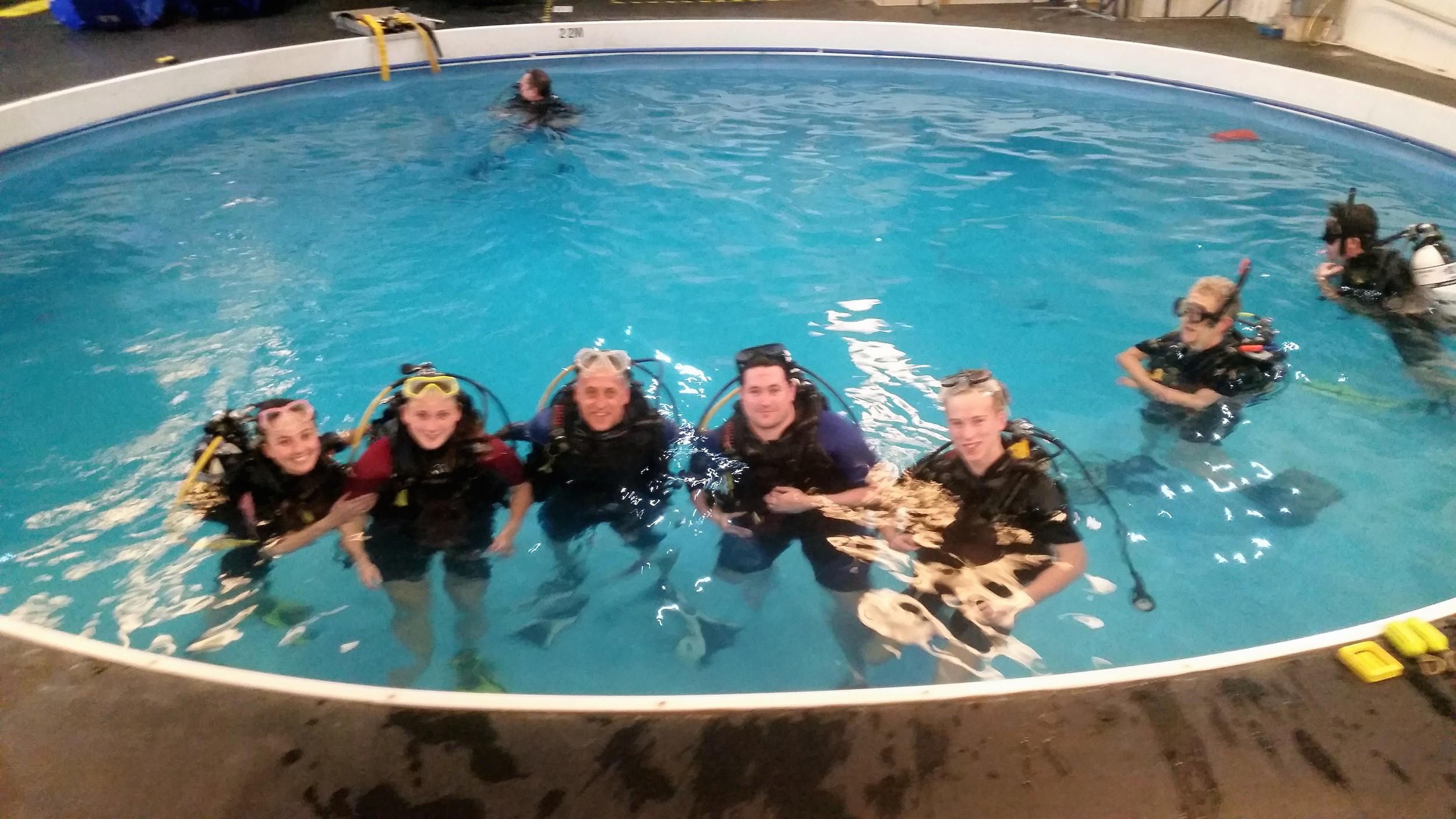 Diving group.jpg
