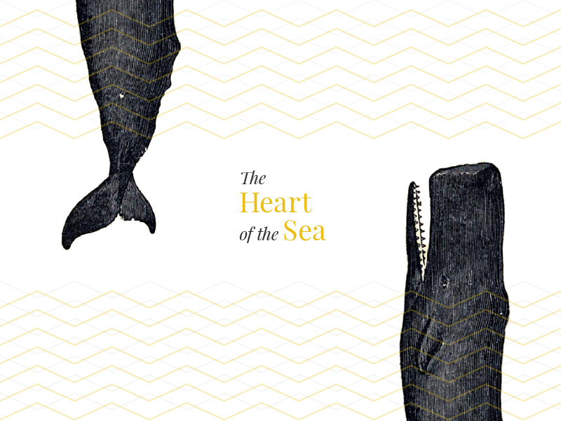 Whales are the true heart of the sea