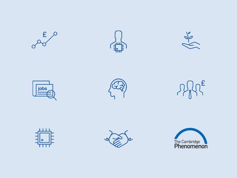 Cambridge Phenomenon project bespoke icon set, by Chiara Mensa for Onespacemedia