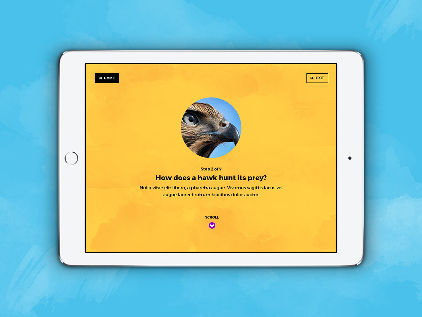 4x3-iPad-land-second-choice-4.jpg