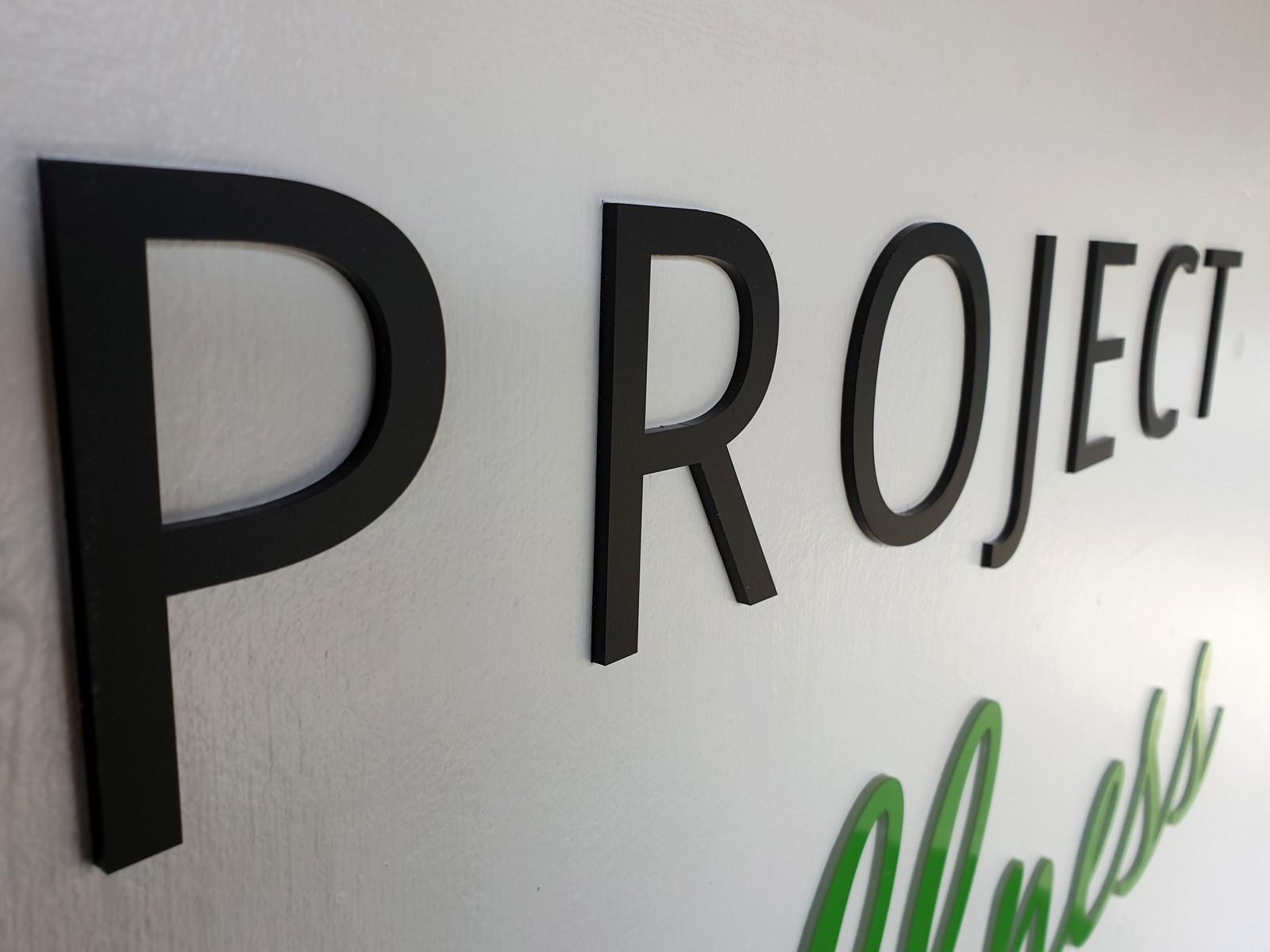 Project (Copy).jpg