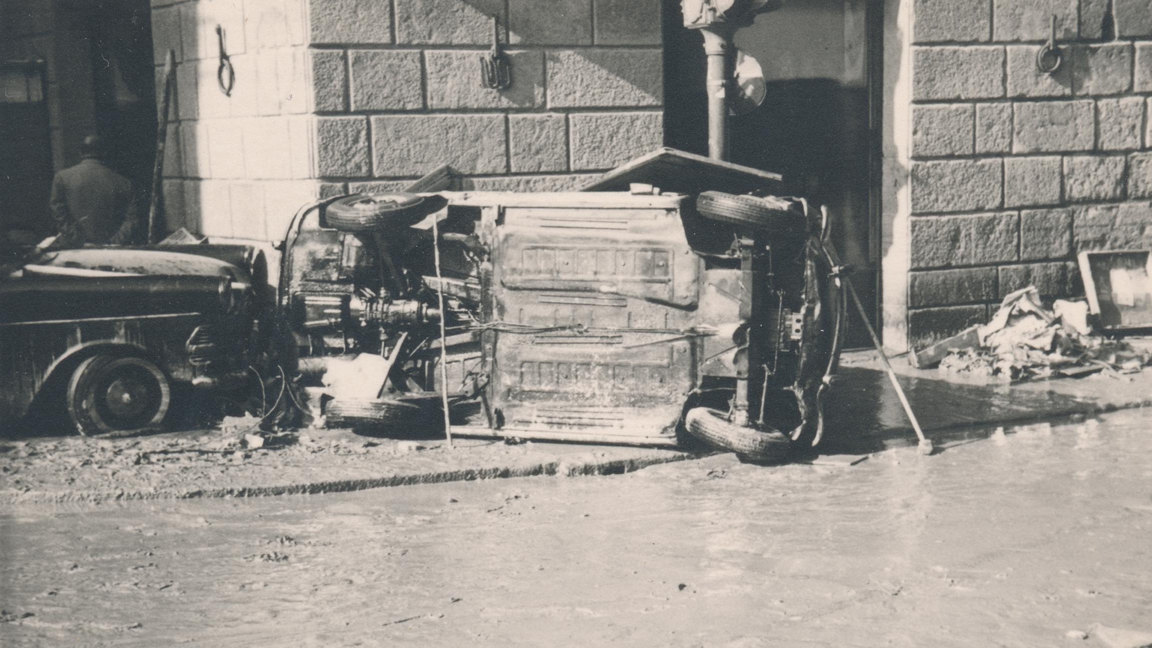 david cass 2.jpg
