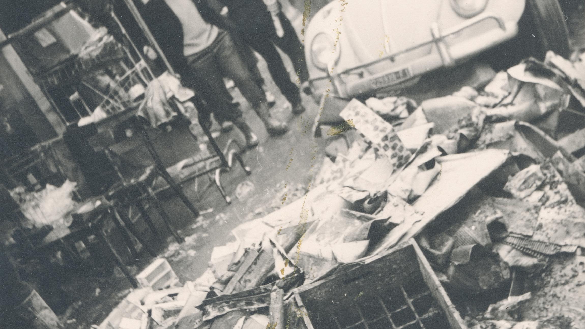 david cass 5.jpg