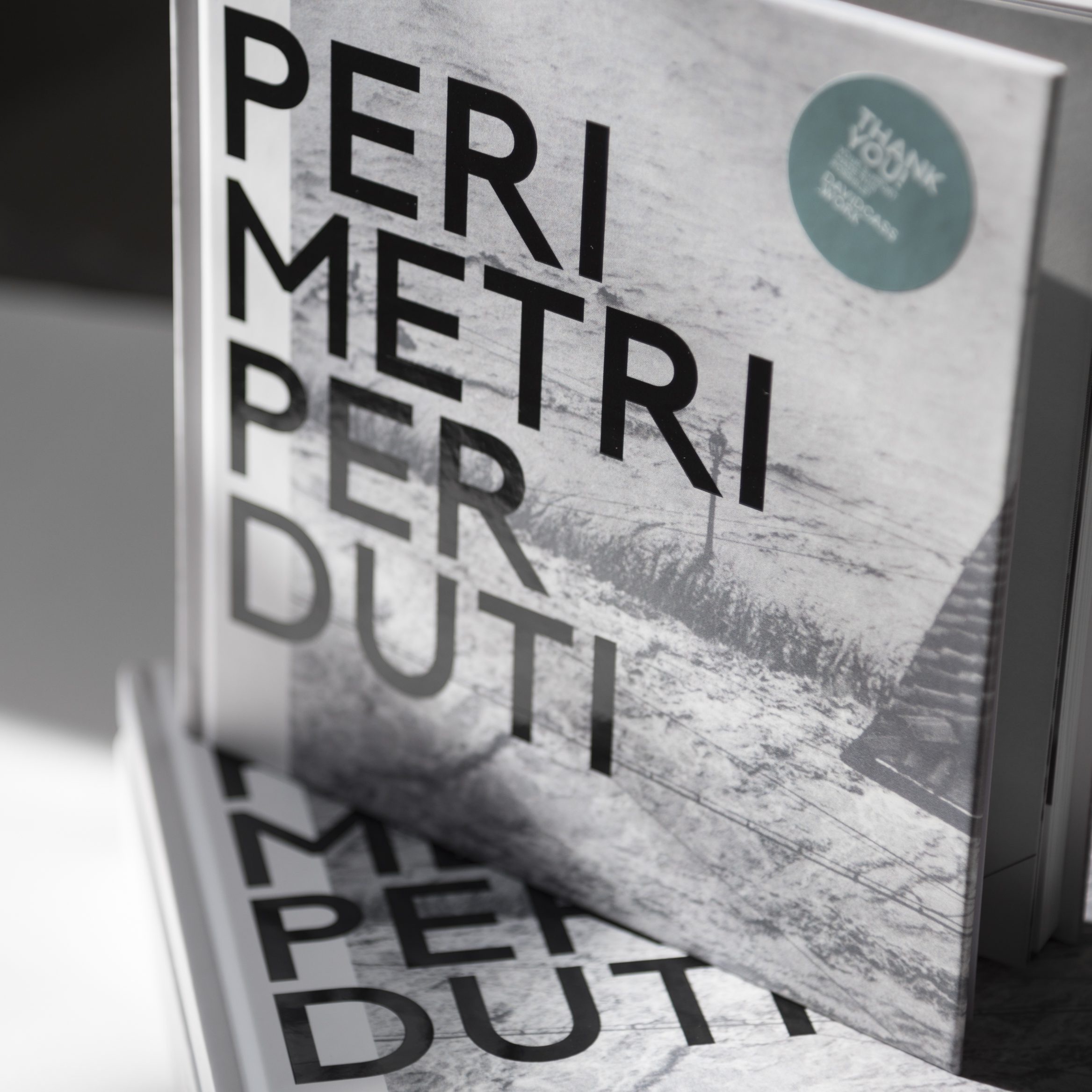 Perimetri Perduti by David Cass