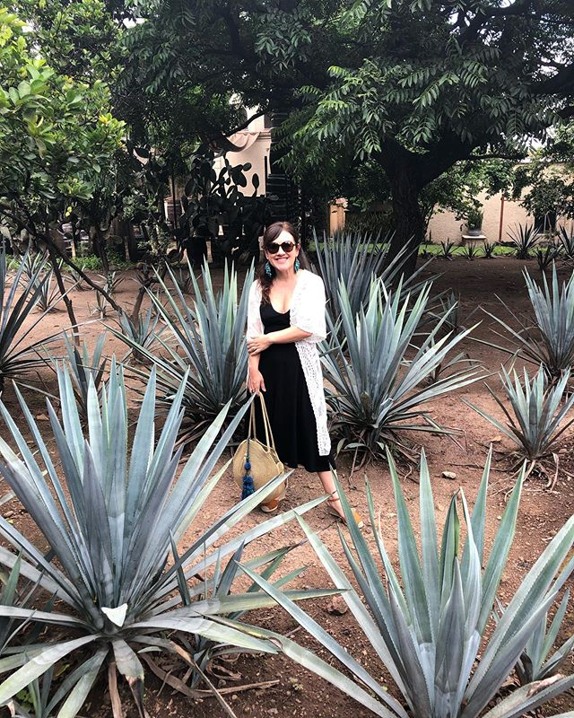 """This weekend was incredible. We saw the beautiful art & architecture of Guadalajara, had a behind-the-scenes tour of Casa Noble by its talented founder (& tasted some """"secret"""" sips, including one that's been aging for 9 years in French oak!) & ate too much incredible food. I hope I (like the tequila) am getting better with age. 🎉"""