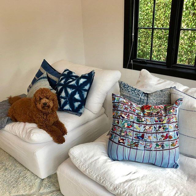 Doodles love shibori! Some of my work in Miami! Thanks for the great photo @renee_moizel 💙💙💙 . . . #shibori #pillows #indigotiedye #shiboripillow #embroideredpillow #huipil #handmadepillows #doodle #goldendoodle #interiordesign #textiledesign #modernhome