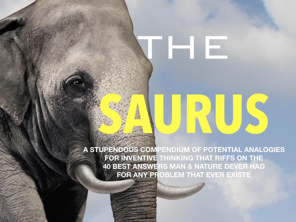 The Saurus Book