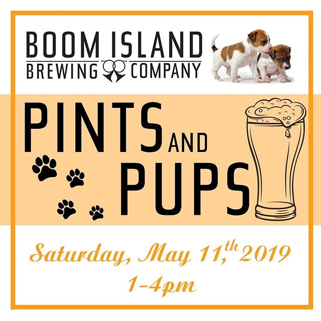 Come hang with us @boomislandbeer tomorrow for this adorable cause!