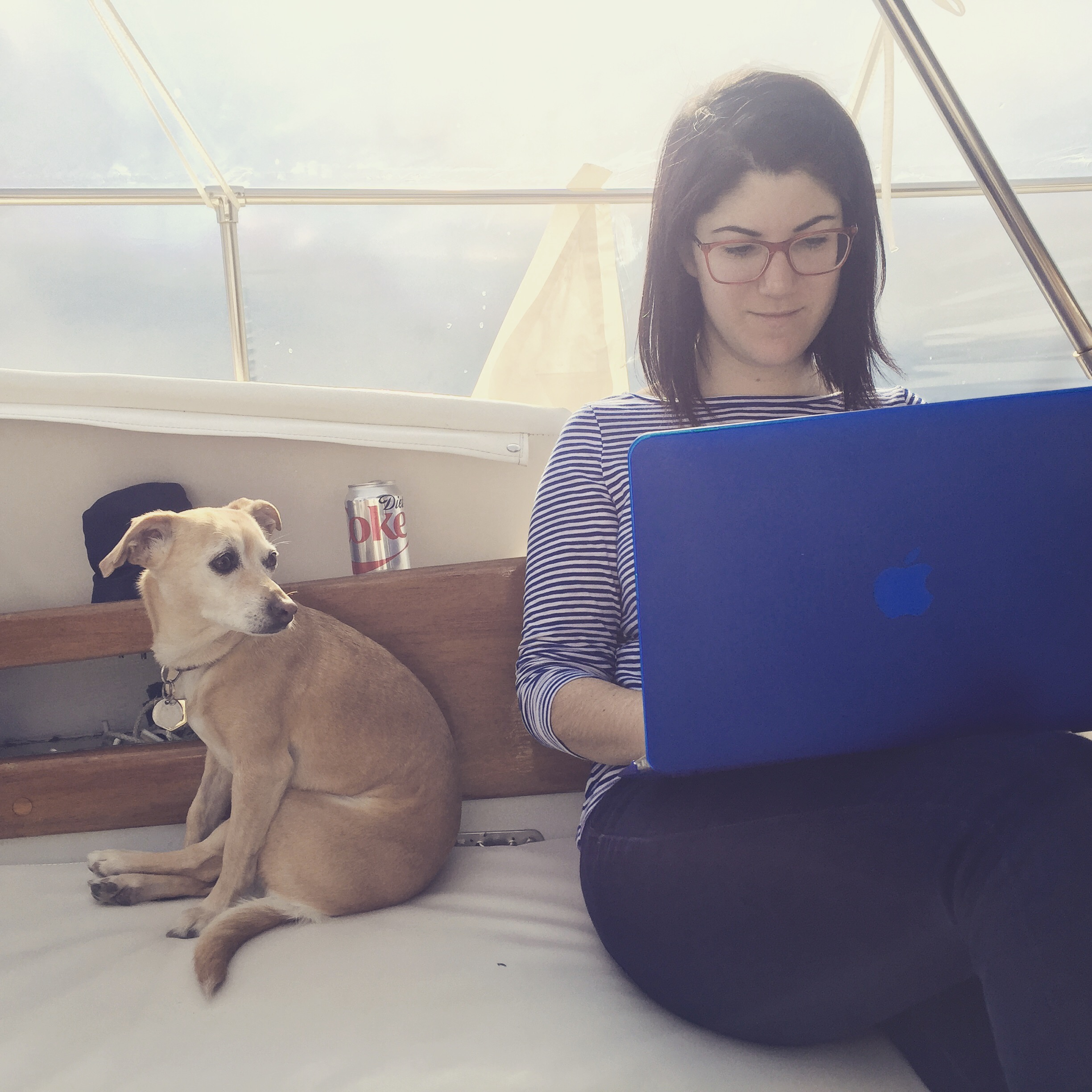 Blogging from the comfort of our cozily wrapped deck.