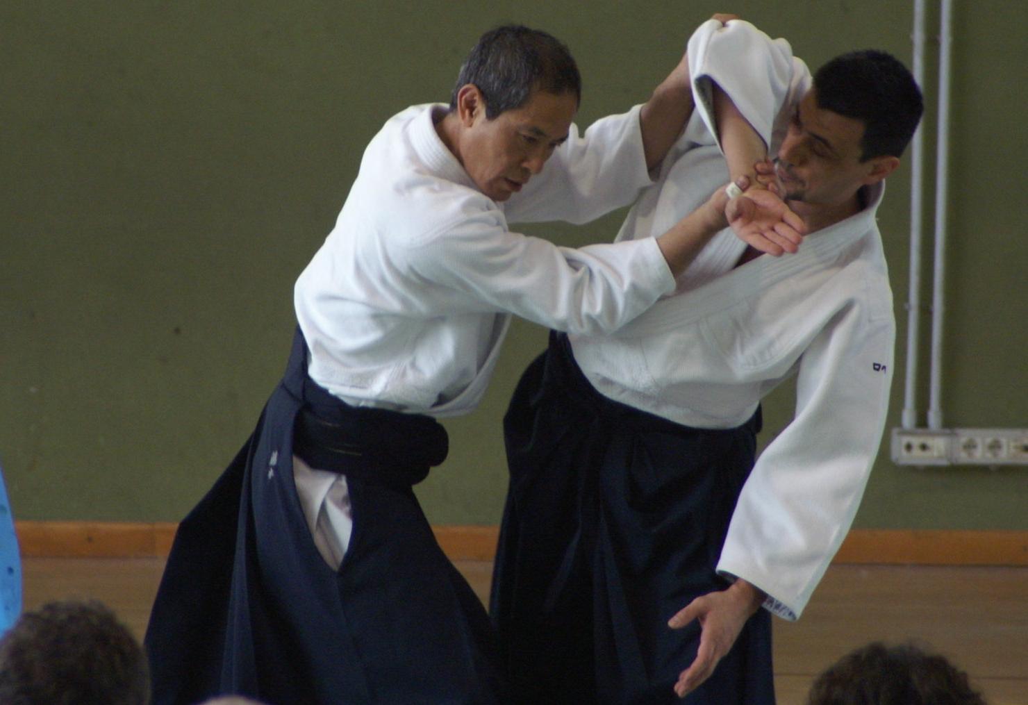 Fujimoto Shihan, uke Roberto Travaglini