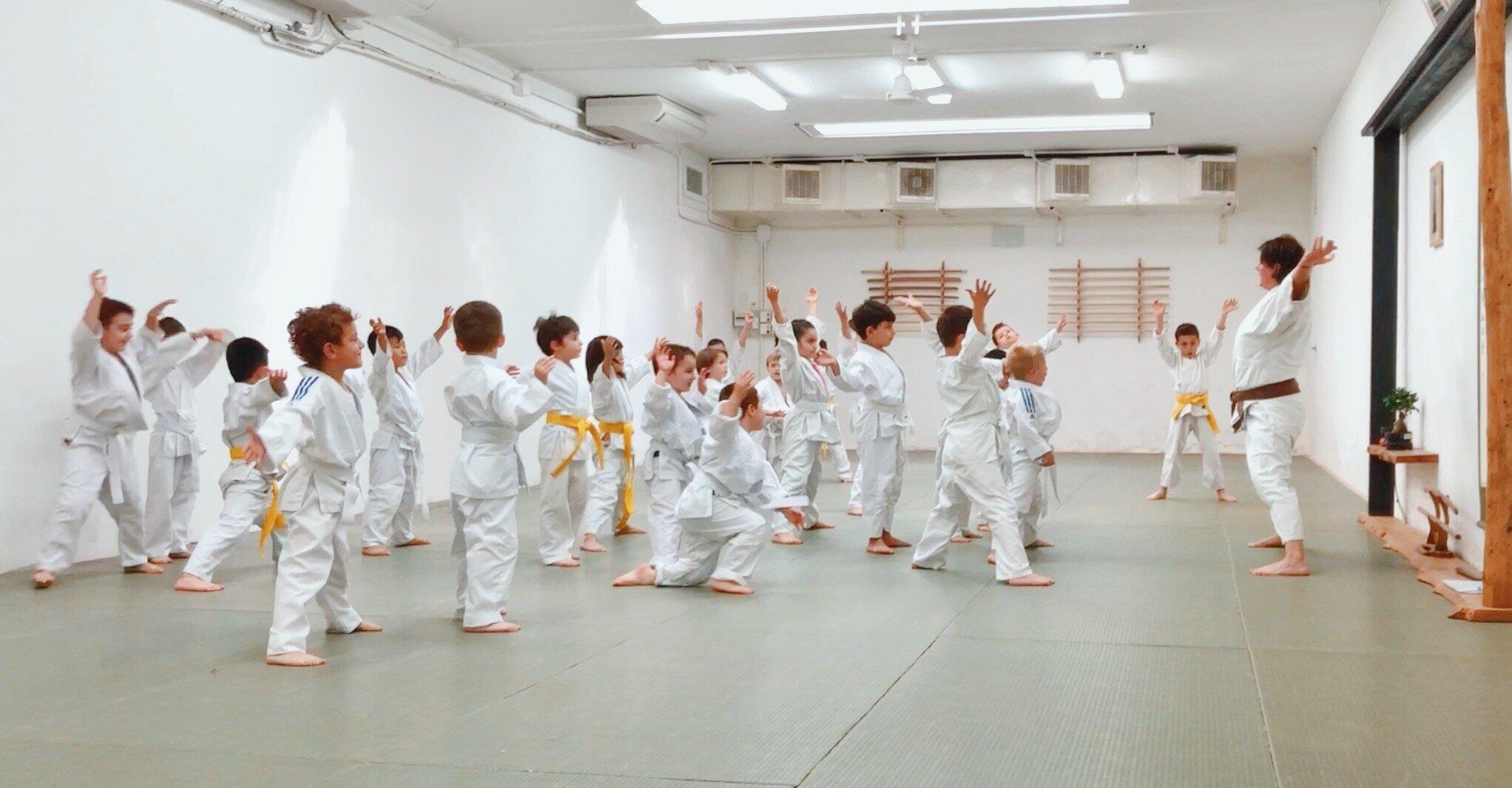 aikido-bambini-bologna-insieme