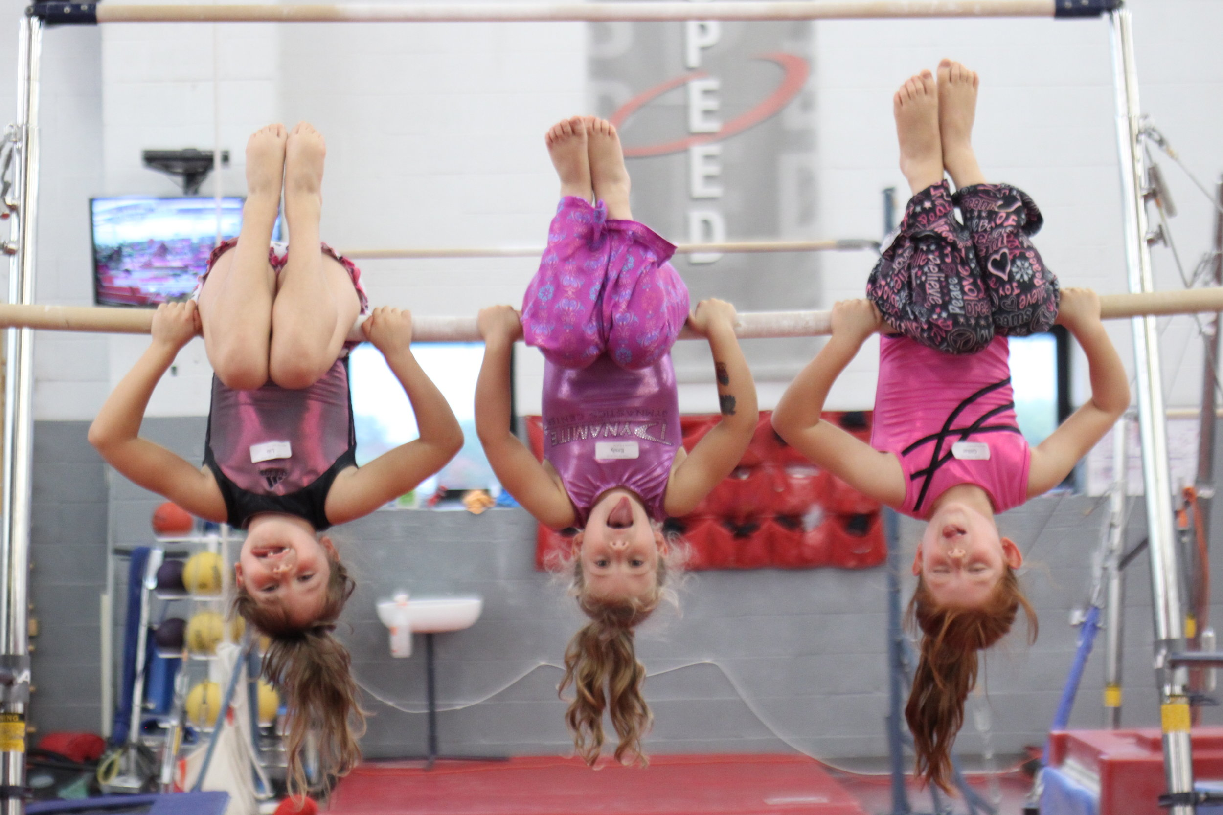 SPRING BREAK CAMP!4/17 - 4/19 & 4/22, 2019 - at DYNAMITE GYMNASTICS CENTER, THE AGILITY CENTER, BOLT PARKOUR & FREERUNNING ACADEMY, and DYNAMITE2 in Shady Grove, Md. MON - FRI, 9 AM-4PM, FULL AND HALF DAY SPOTS AVAILABLE, click on the gym's name and learn about each of our camps!