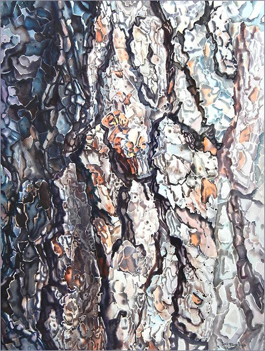 """White Pine"", 30 x22inches , watercolour"
