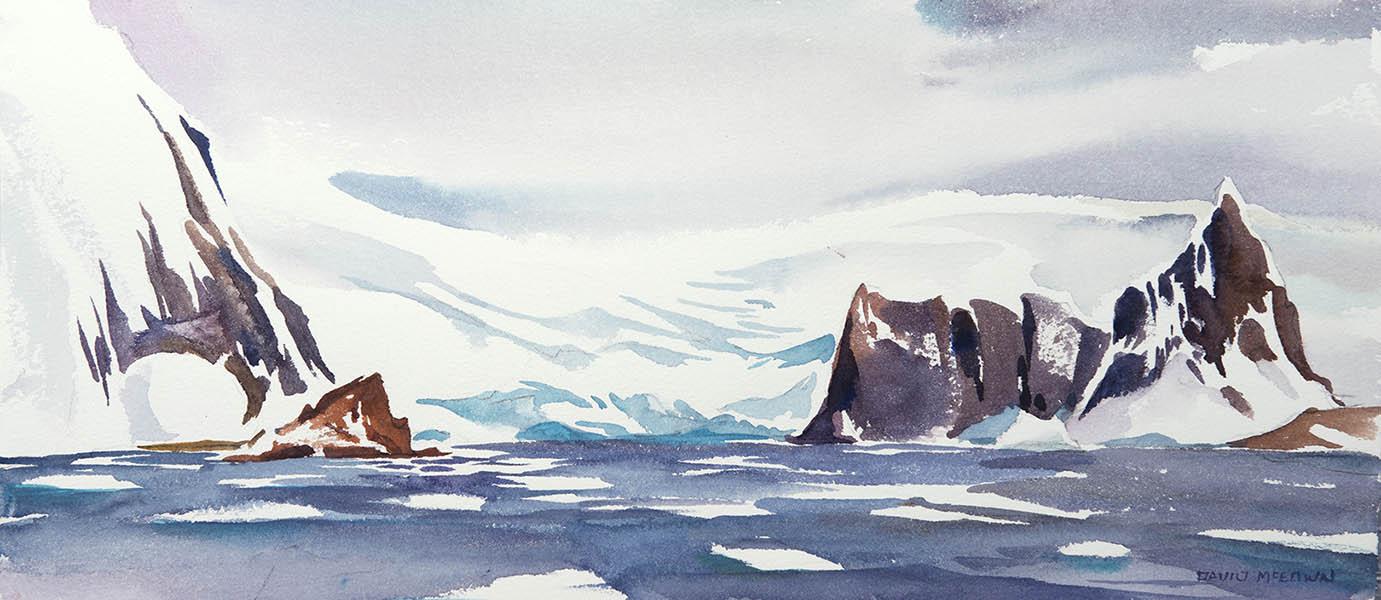 Point Wild - Elephant Island n.1