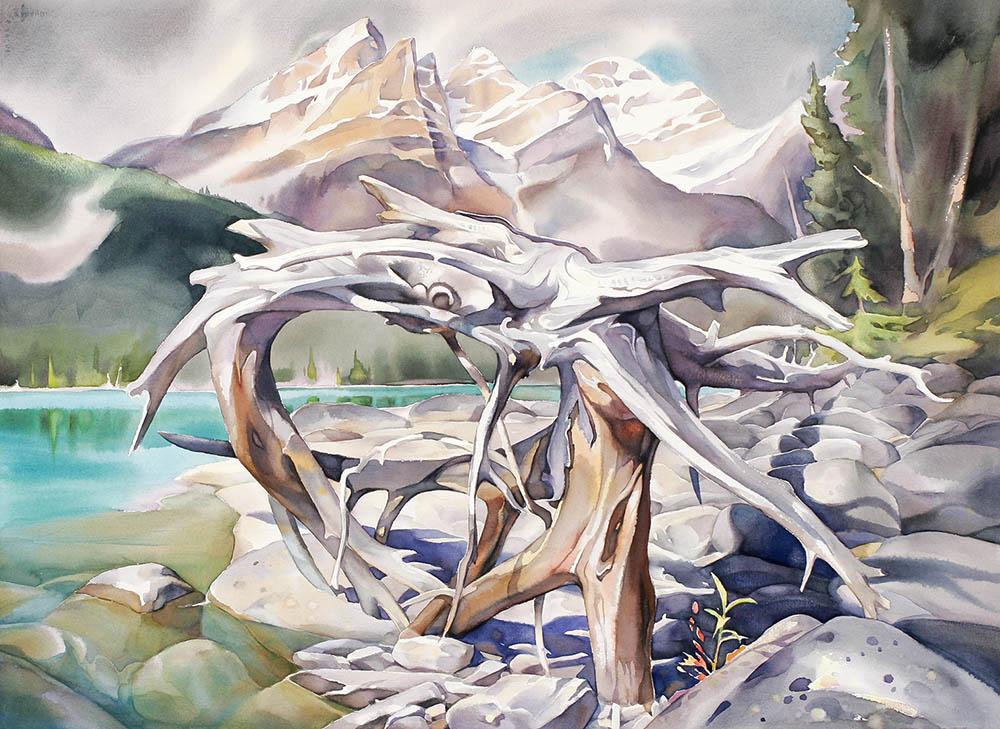 Ancient Cycle, Peyto Lake Shoreline