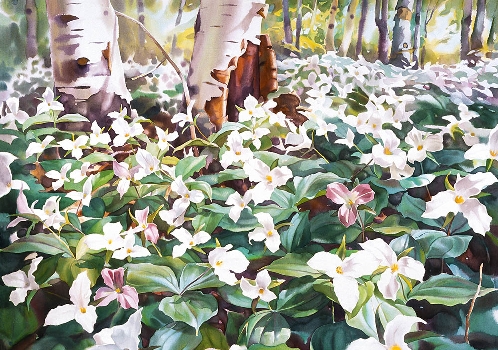 Sacred Spring