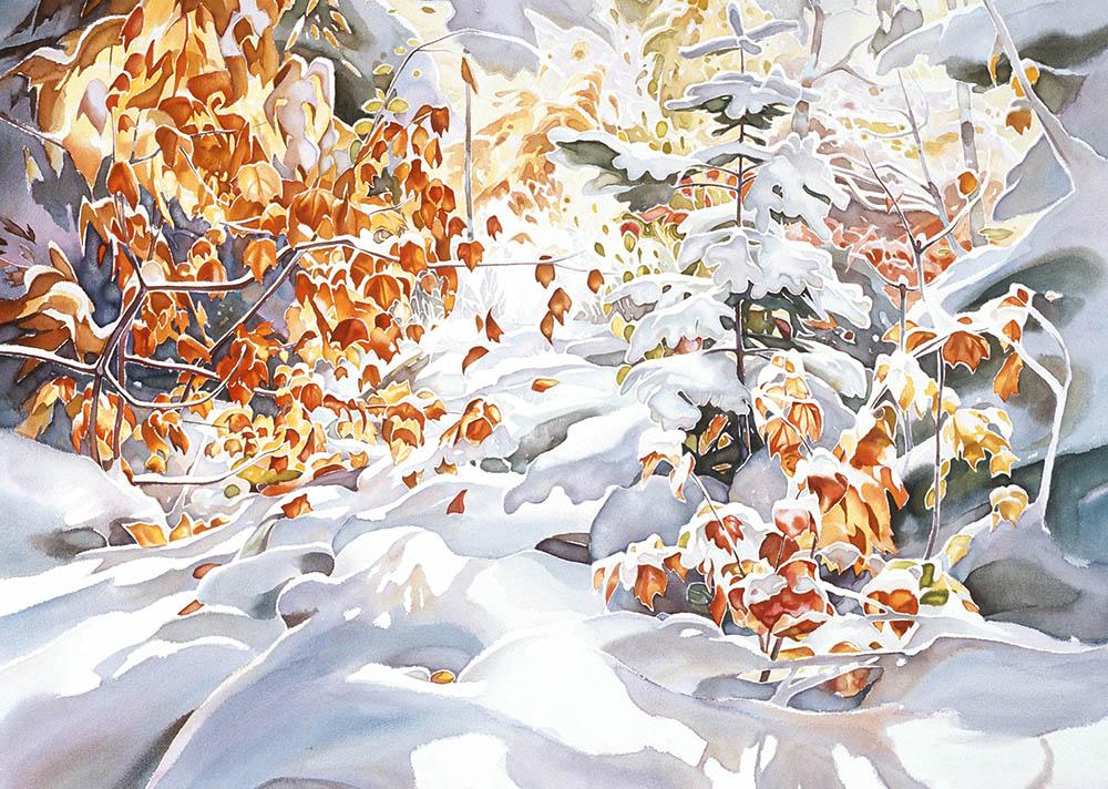 Early Snow - Algoma Highlands