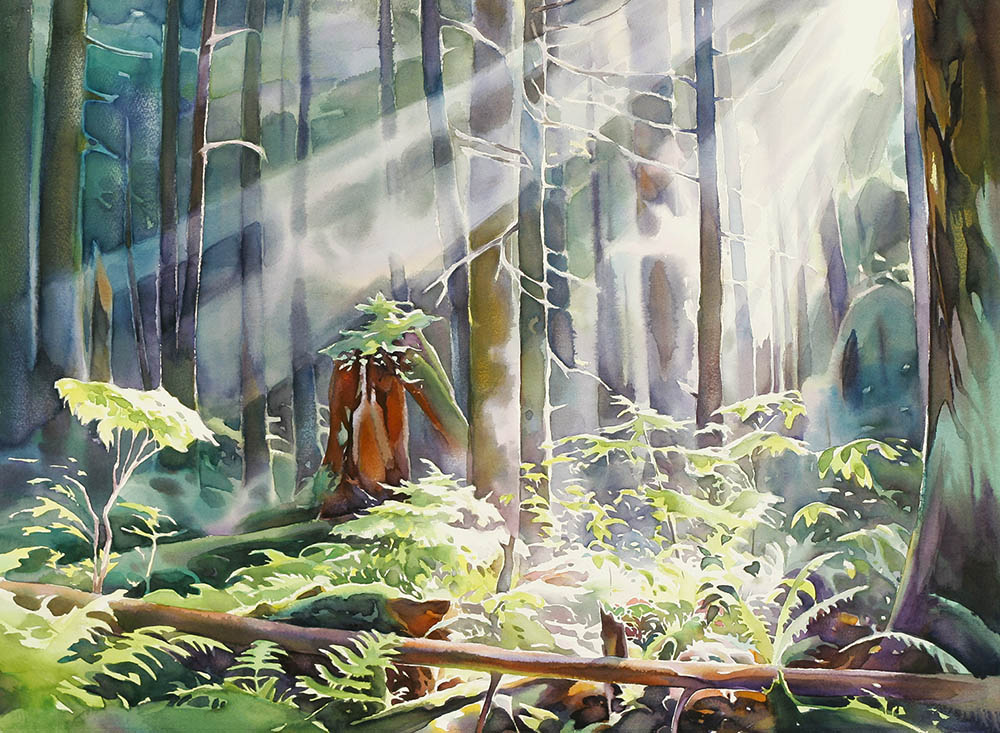 Pacific Spirit Forest