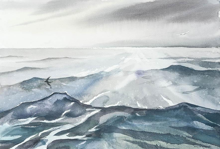 Drake Passage - Horizon Embrace