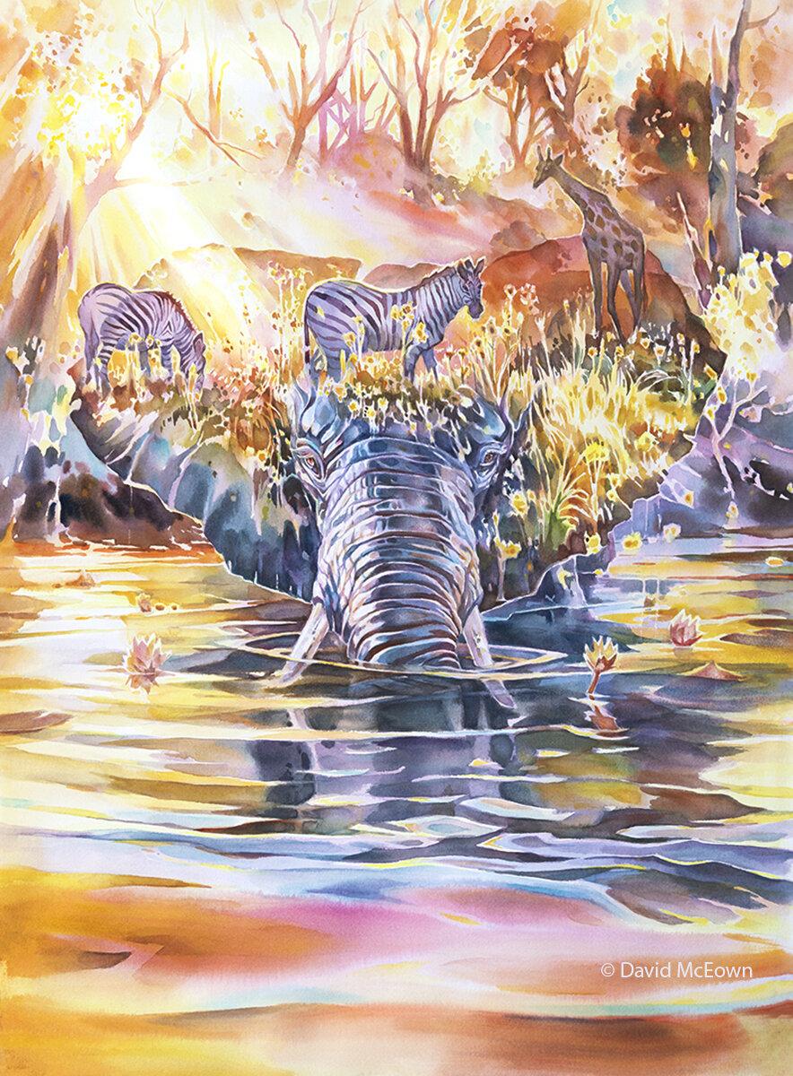 Okavango Dream (available for sale)