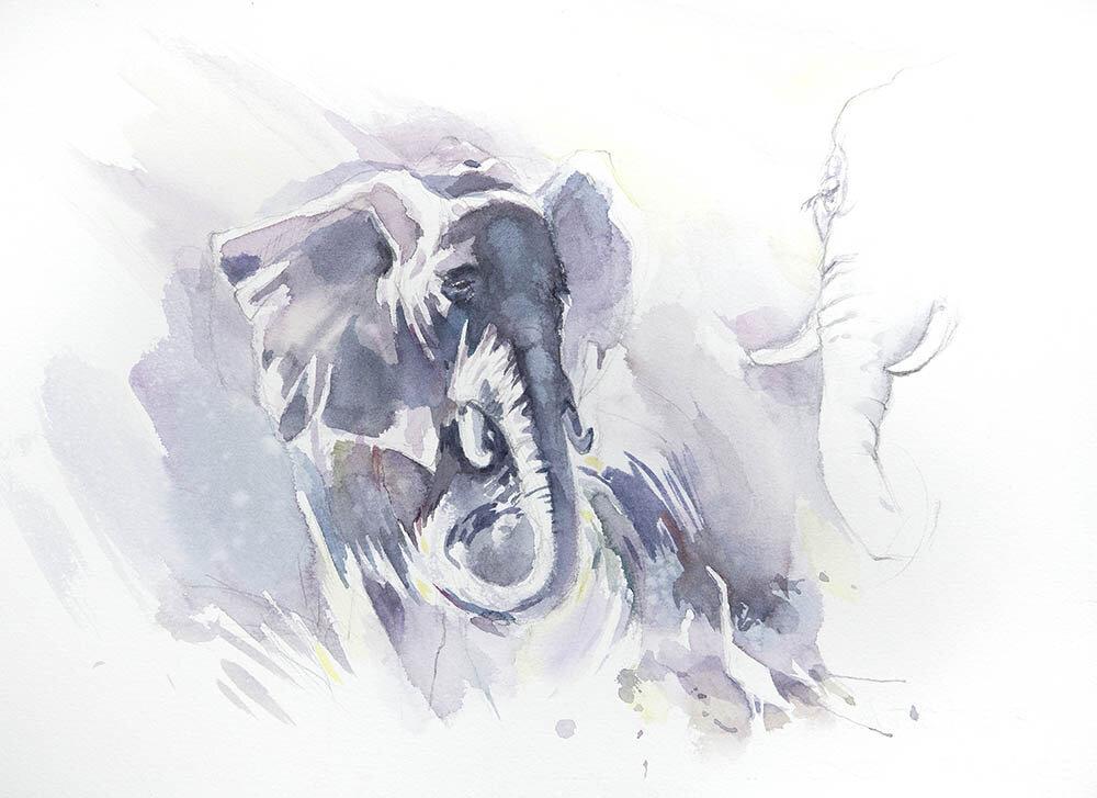Okavango Dream sketch 1 (available for sale)