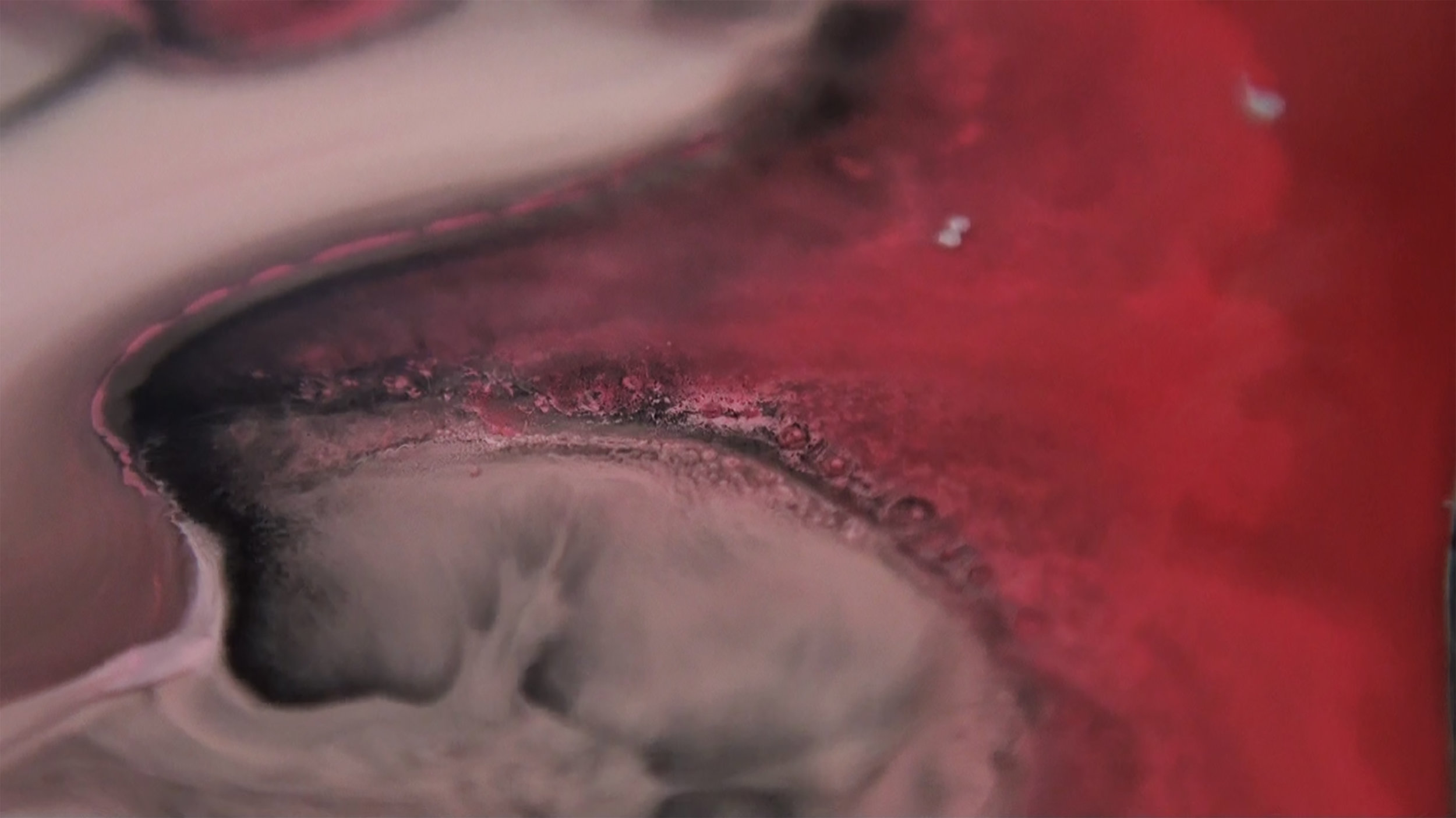 titaniumdioxide8.jpg