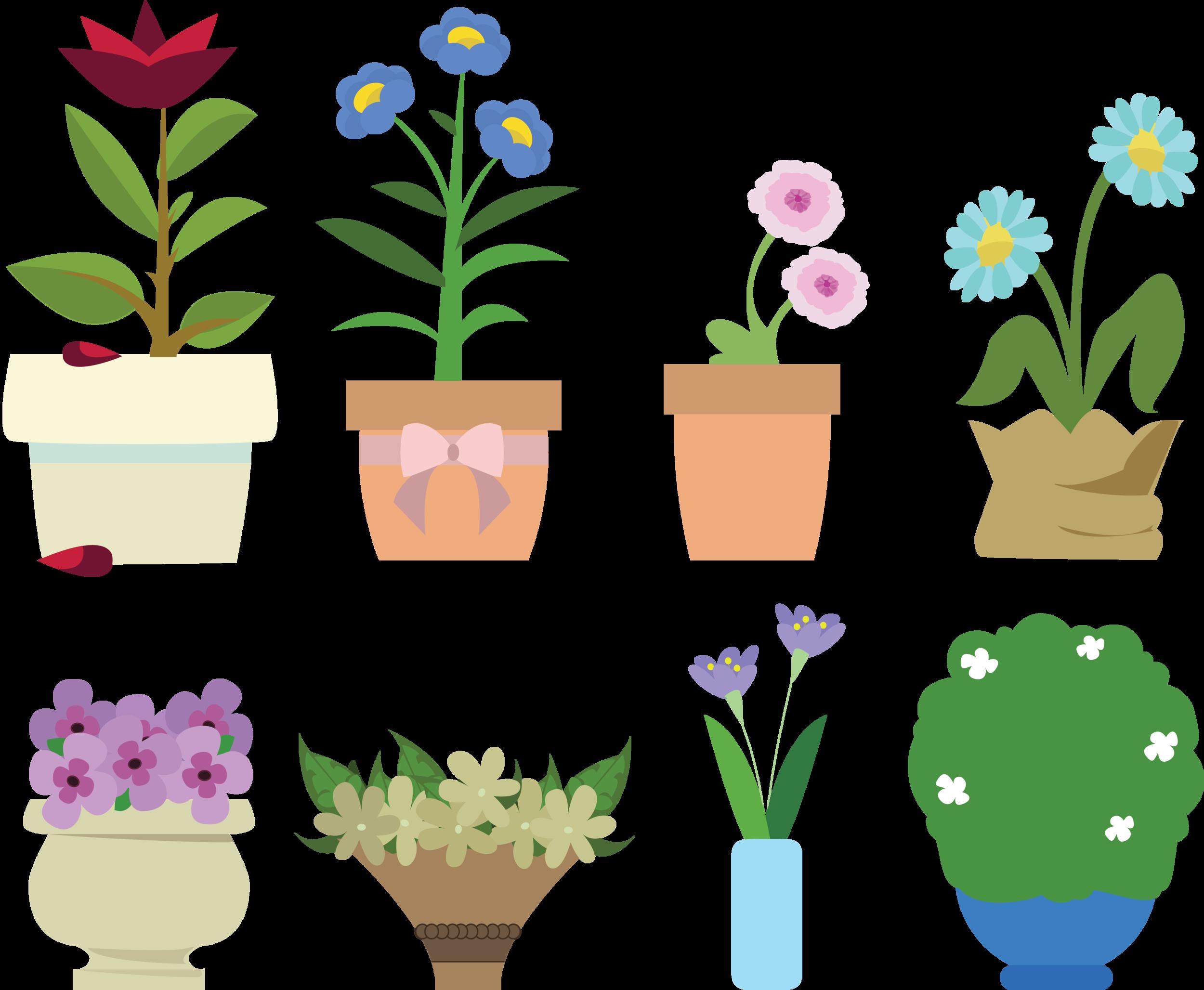 plants.png