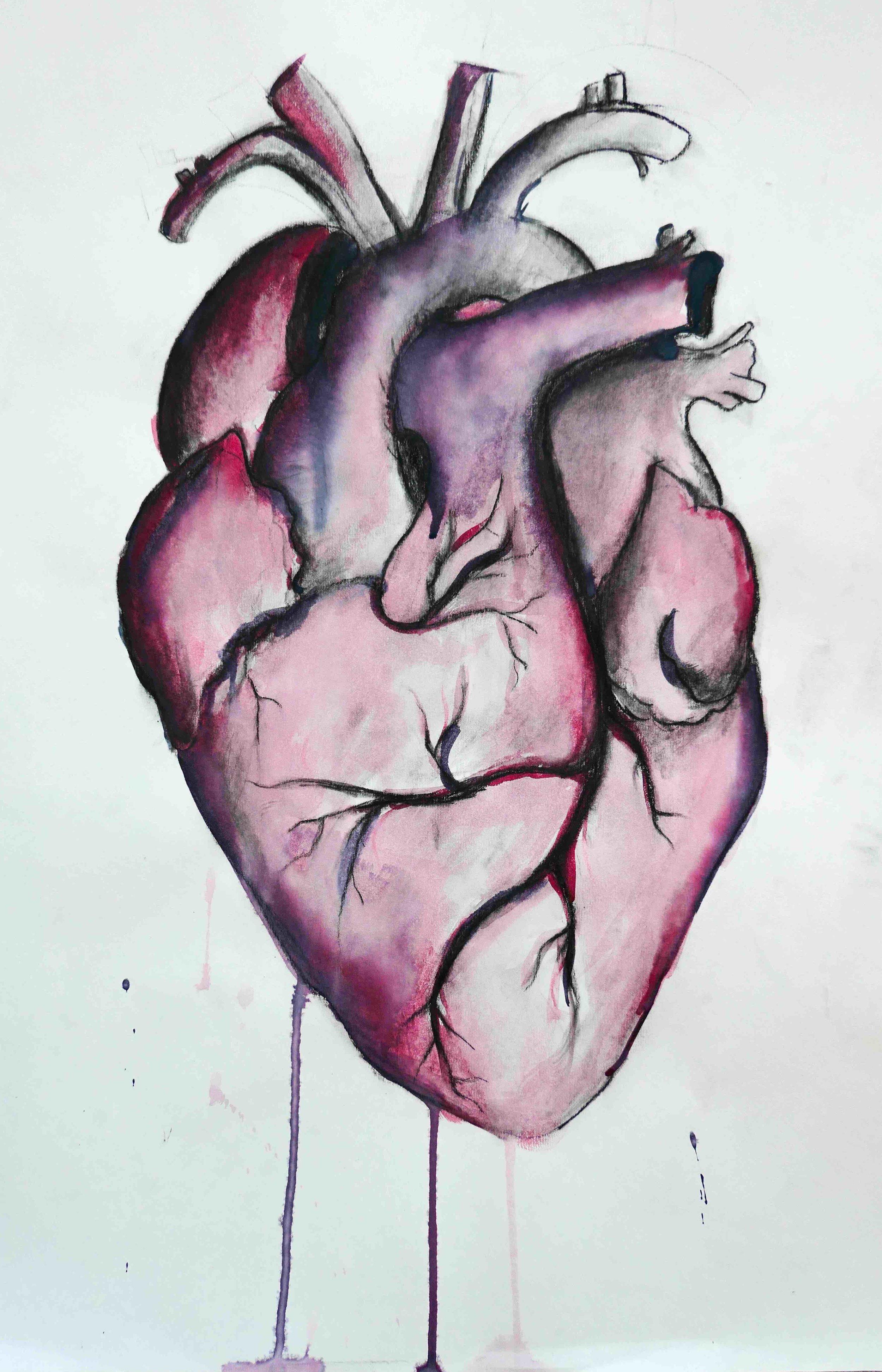ANATOMICAL HEART by Heather Grace Hancock