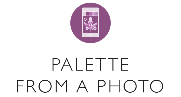 Palette from a photo - logo.png