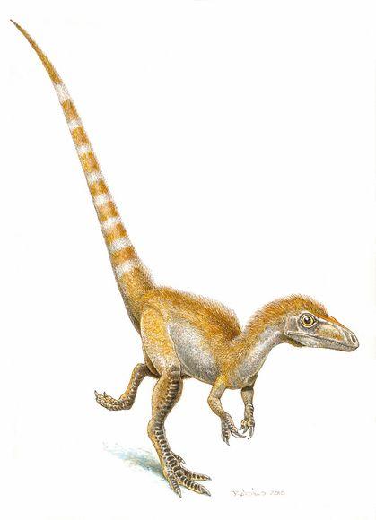 Dino%20Colors.jpg
